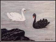 Swan Song, Acrylic                             on Unframed 18cm x 24cm stretched canvas